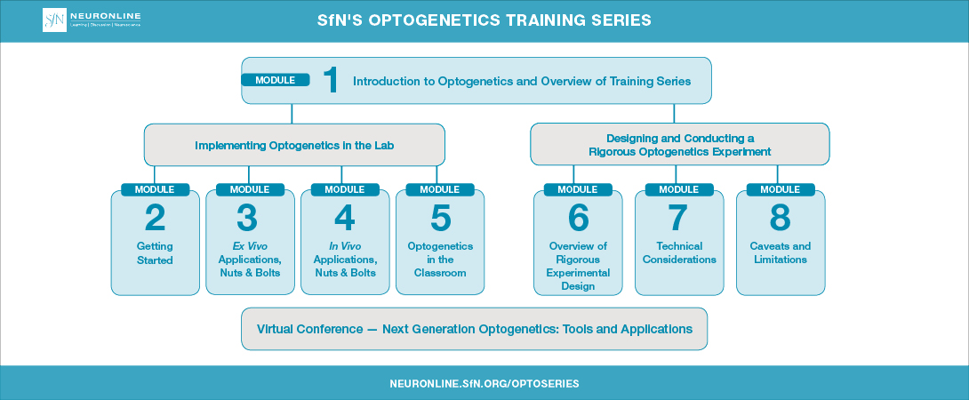 Layout of SfN's Optogenetics Training Series