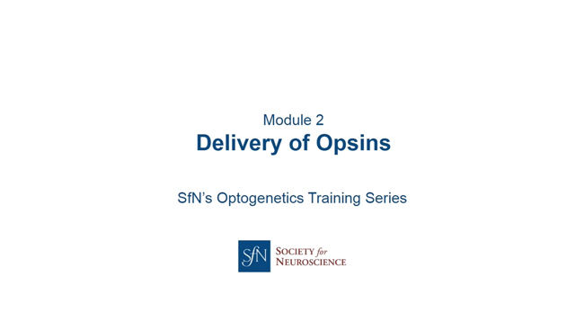 Delivery of Opsins title image with SfN logo.