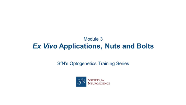 Ex Vivo Applications, Nuts and Bolts title image