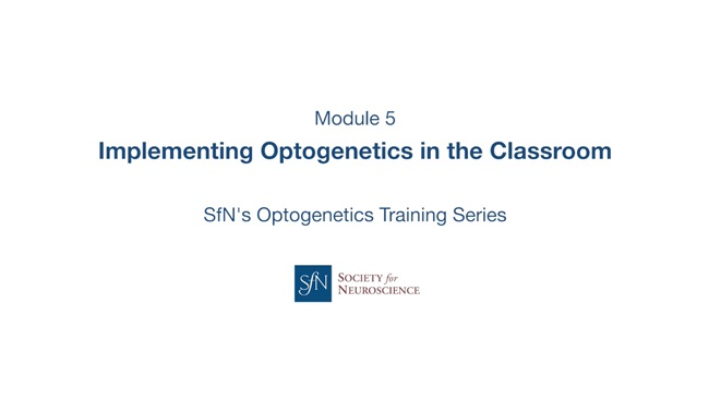 Implementing Optogenetics in the Classroom title image