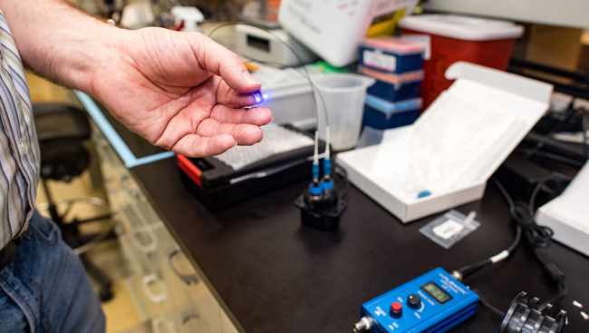 close up image of an optogenetics experiment being set up in the lab.