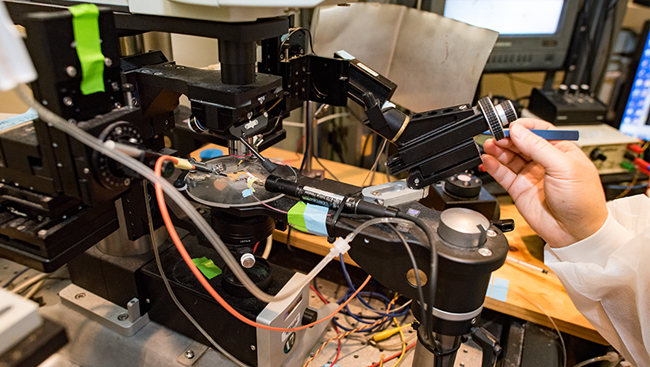 Optogenetics experiment set up in a lab