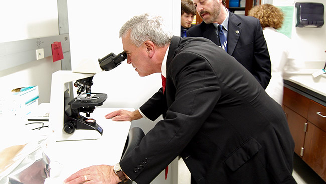 A congressional representative looks through a microscope while touring a lab.