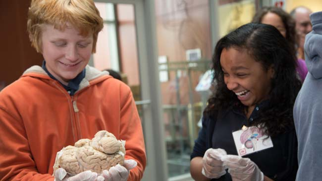 Two elementary students learn about the brain at an outreach event.