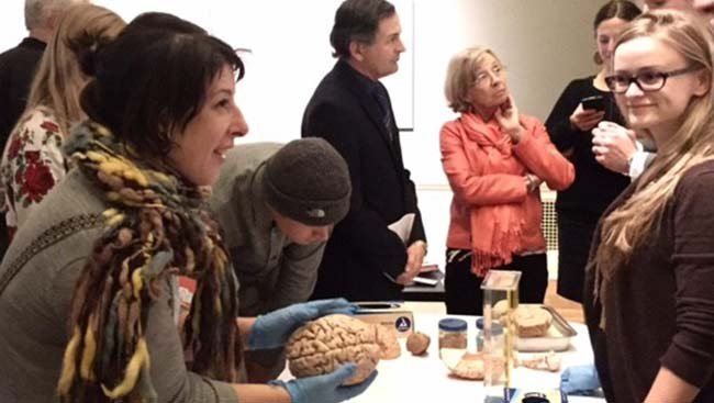 Two neuroscientists give a presentation on the brain to the public.