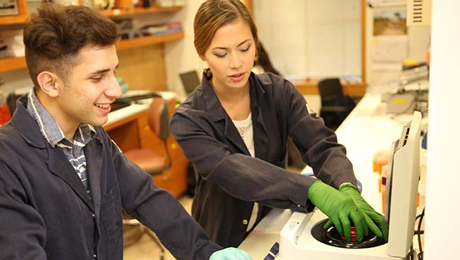 Two neuroscientists conduct an experiment in the lab.