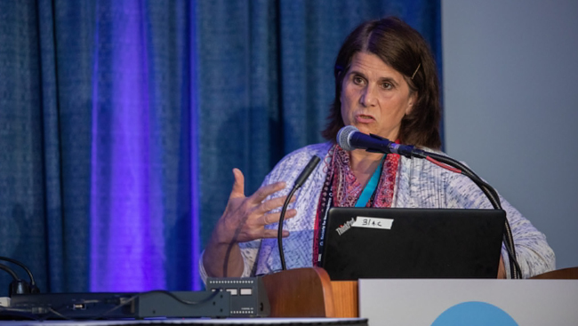 Maryann Martone speaks at Neuroscience 2018