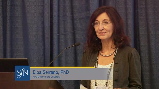 Elba Serrano speaks at the NSP mentoring breakfast in 2018