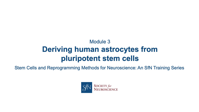 Title card for presentation, Deriving Human Astrocytes from Pluripotent Stem Cells