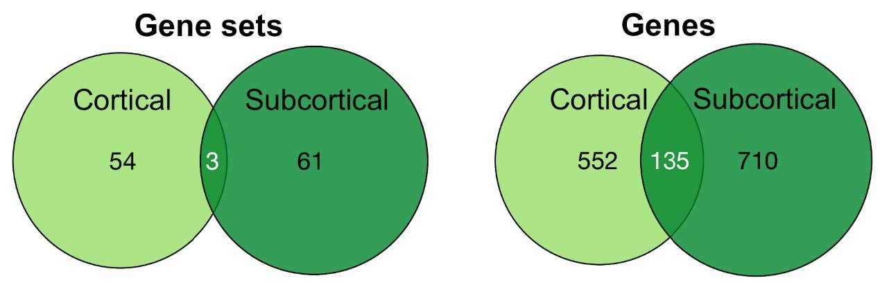 Figure 5 from Pin Kwang Tan et al., eNeuro 2019.