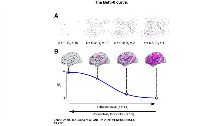 The Betti-0 curve. A, Two-dimensional toy example: a set of 15 nodes, four filtration values ε, represented as the circle diameter and their corresponding Betti-0 (B0). B, Betti-0 curve for a hypothetical brain network; each point in the curve represents the B0 for each filtration value. In both cases, at ε = 0 the number of components is equal to the number of nodes, n. As the filtration value increases, the number of components reduces, and eventually will reach a single one containing all nodes. Brain views generated with brain-net (Xia et al., 2013), r stands for Pearson's correlation.