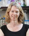 Victoria Prince, PhD