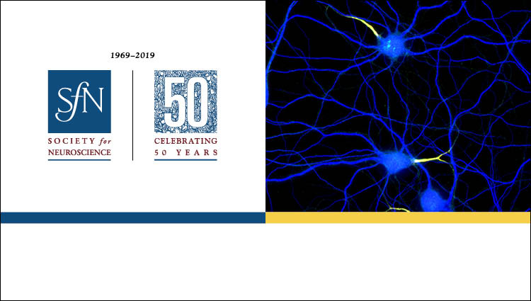 generic science image and SfN 50th Anniversary logo